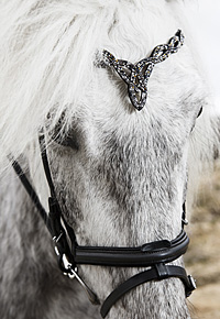 HEADSTALL HERITAGE E FIRE & ICE Image